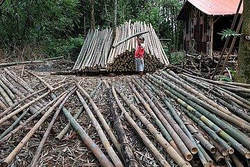 INDONESIEN-BOGOR-BAMBOO DORF