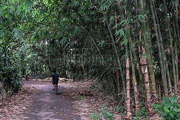 INDONESIEN-BOGOR-BAMBOO DORF INDONESIEN-BOGOR-BAMBOO DORF