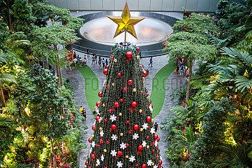 Singapur  Republik Singapur  Weihnachtsbaum im Shiseido Forest Valley des Jewel Terminal am Flughafen Changi