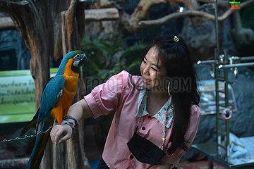 THAILAND-CHONBURI-MONSTER AQUARIUM