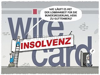 Wirecard consulting