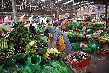 CHINA-TIBET-moderne Landwirtschaft Gemüse (CN)