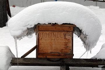 Mestia  Georgien  Bienenbeute ist im Winter mit Schnee bedeckt