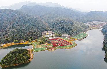 CHINA-GUANGDONG-GUANGZHOU-TOURISM-FLOWERS (CN)