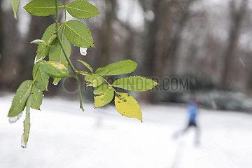 GERMANY-BERLIN-FIRST SNOW