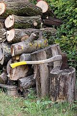 Ingelheim  Deutschland  Axt steckt vor zerteilten Baumstaemmen in einem Baumstumpf