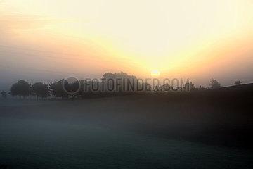 Neu Heinde  Deutschland  Nebel am Morgen ueber einem Feld