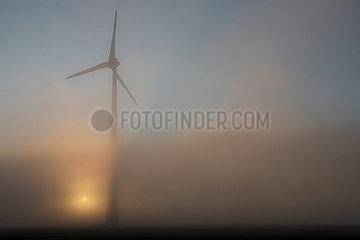 Neu Heinde  Deutschland  Windkraftanlage bei Sonnenaufgang im Nebel