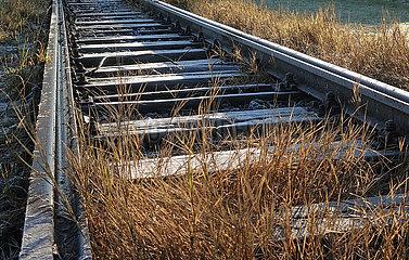 Berlin  Deutschland  Graeser wachsen im Gleisbett einer stillgelegten Bahnstrecke auf dem Tempelhofer Feld