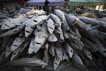 CHINA-HEILONGJIANG-FUYUAN-FISH MARKET (CN)