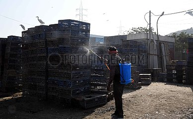 INDIA-NEW DELHI-DESERTED CHICKEN WHOLESALE MARKET