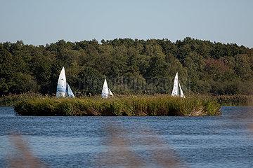 Deutschland  Winsen / Aller - Segelboote im Naturschutzgebiet Meissendorfer Teiche