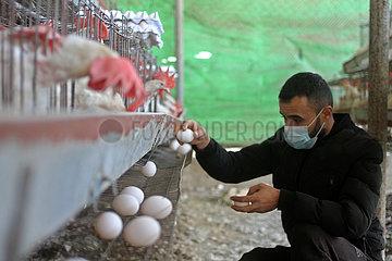 MIDEAST-GAZA-Eiproduktion