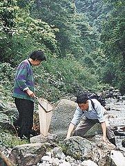 CHINA-SICHUAN-CHENGDU INSTITUTE OF BIOLOGY-CAS-ELDER COUPLE-HERPETOLOGICAL RESEARCH (CN)