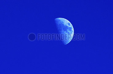 Mond am Taghimmel  Muenchen  Januar 2021