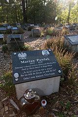 Deutschland  Lohheide - Gedenkstaette Bergen-Belsen  symbolische Graeber zum Gedenken an Opfer des Lagers  hier fuer einen Polen  der 1945 auf einem Todesmarsch nach Bergen-Belsen umkam