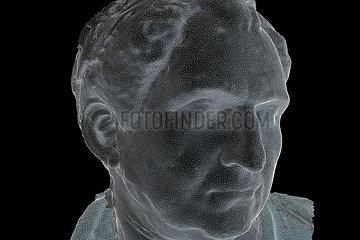 CGI-Visualisierung: Portrait: Vitellius