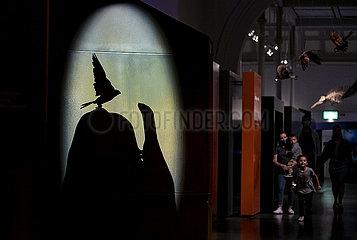 AUSTRALIA-SYDNEY-AUSTRALIAN MUSEUM-SUMMER NIGHT-ENTERTAINMENT