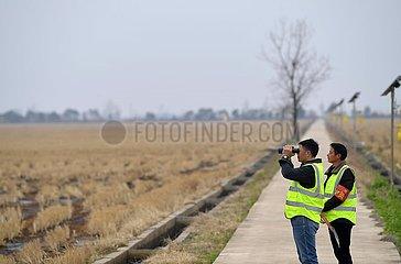 CHINA-JIANGXI-POYANG LAKE-MIGRANT BIRDS-PROTECTORS (CN)