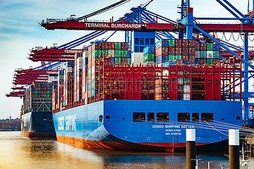 Containerschiffe am Burchardkai