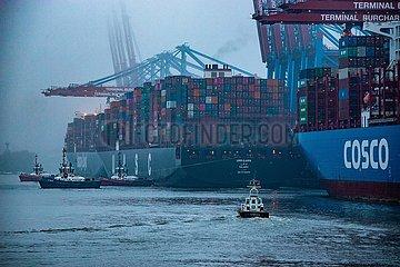 Containerschiff Um Qarn am Burchardkai