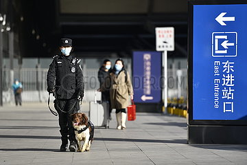 CHINA-TIANJIN-SPRING FESTIVAL-TRAVEL RUSH-GUARD DOGS (CN)