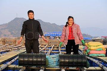 (FOCUS) CHINA-FUJIAN-SPRING FESTIVAL TRAVEL-MIGRANT MOTHER-SEA CUCUMBER-FARMING (CN)