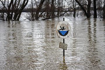 Hochwasser am Rhein  Duisburg  Nordrhein-Westfalen  Deutschland