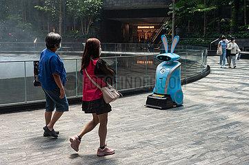 Singapur  Republik Singapur  Automatisiertes Reinigungsgeraet im Jewel Terminal des internationalen Flughafen Changi
