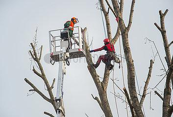 Berlin  Deutschland - Baumarbeiten