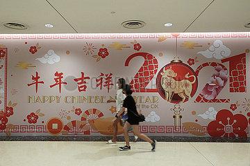 SINGAPUR-LUNAR NEW YEAR-DEKORATIONEN SINGAPUR-LUNAR NEW YEAR-DEKORATIONEN