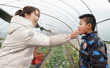 CHINA-JIANGXI-Yichun-Lehrer und Schüler-STAY PUT-SPRING FESTIVAL (CN)