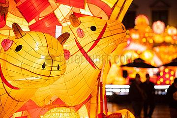 CHINA-CHINESISCHE LUNAR NEW YEAR-OX (CN)