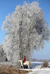 Altlandsberg  junge Frau macht einen Ausritt in der winterlichen Landschaft