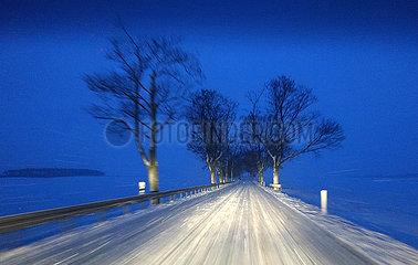 Jueterbog  Deutschland  schneebedeckte Landstrasse bei Morgendaemmerung