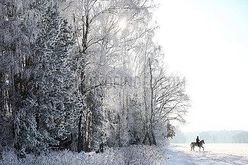 Altlandsberg  junger Mann macht einen Ausritt in der winterlichen Landschaft