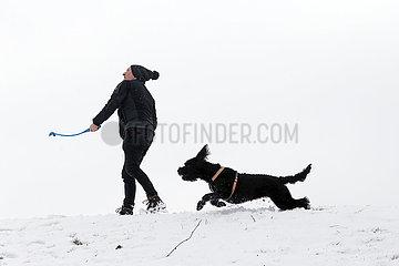 Graditz  Deutschland  Mann spielt im Winter bei Schnee Ball mit seinem Hund