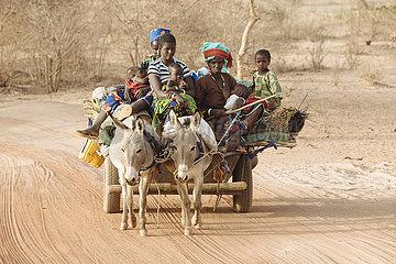 Eselskarren mit Nomaden auf der Landstrasse und Piste