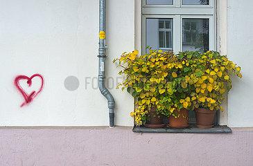 Berlin  Deutschland - Liebesbotschaft an einer Parterrewohnung