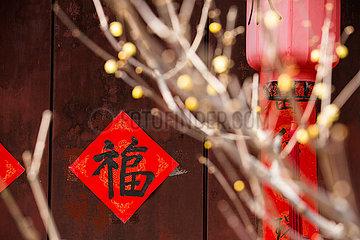CHINA-BEIJING-WINTERSWEET (CN)