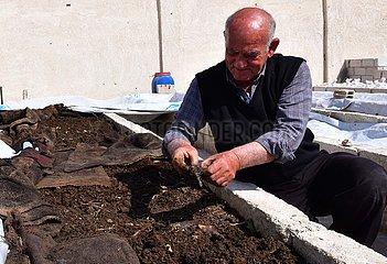 SYRIEN-DAMASKUS-WORM FARM