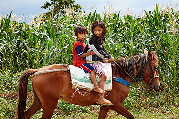 Kinder auf einem Pferd