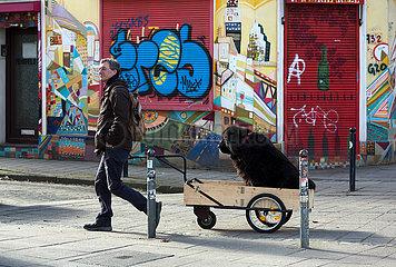 Deutschland  Bremen - Mann transportiert vermutlich fusskranken Hund in einem Handwagen