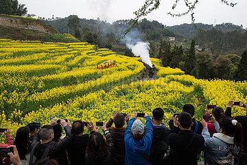 CHINA-SICHUAN-Qianwei-DAMPFZUG (CN)