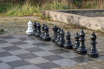 Berlin  Deutschland - Schachfiguren in einem Park