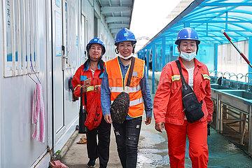 CHINA-HAINAN-HAIKOU-TOWER CRANE OPERATORS (CN)