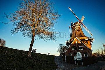 Historische Mühle hinterm Deich in Jork an der Elbe