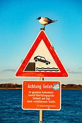 Lühe Anleger an der Elbe: Schild mit Seevogel