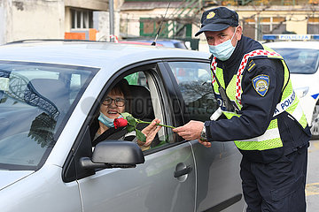 KROATIEN-SIBENIK-INTERNATIONAL WOMEN'S DAY-FLOWER Gebende