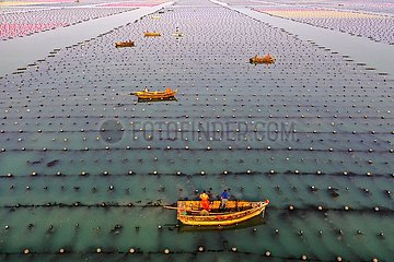 #CHINA-SHANDONG-RONGCHENG-AQUACULTURE (CN)